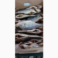 Продам речную вяленную и копченую рыбу в ассортименте (лещ, тарань, густера, окунь, судак
