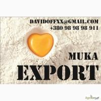 Мука на экспорт ОПТОМ