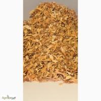 Жилка центральная табачная