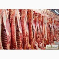 Мясо говядины из Украины на экспорт