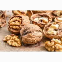 Куплю дорого грецкий орех