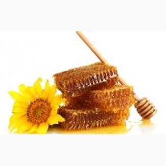 Предприятие закупает мед у производителей, Днепр