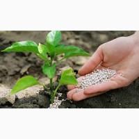 ПАТ Аграрний фонд пропонує мінеральні добрива по форвардній програмі та обміну на зерно