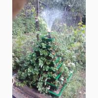 Многоярусная клумба для цветов и клубники