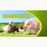 Комбикорм для птиц и животных