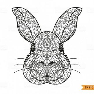 Голови кроля