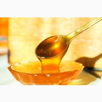 Продам липовий мед