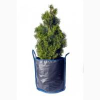 Контейнери для вирощування рослин від виробника