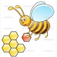 Куплю пчёлопакеты сотовые или безсотовые, Запорожская обл