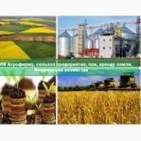 Куплю землі сільськогосподарського призначення, агрофірми, корпоративні права на територі
