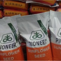 Семена подсолнечника Пионер P64LE99 Пионер 99 USA
