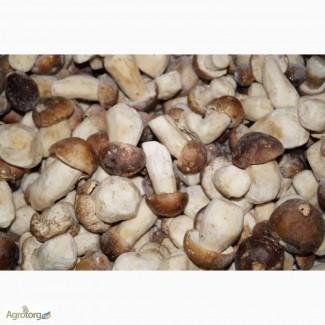 Белый гриб целый 1 сорт в ящиках по 8 и 12 кг