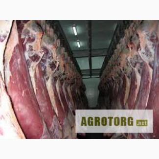 Продам мясо свинины, говядины.
