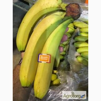 Продаем бананы