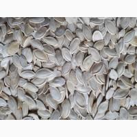 Продам гарбузове насіння на єкспорт та по Україні