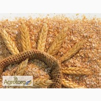 Постоянно в продаже пшеничные отруби