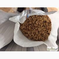 Продам 5 тонн ядра ореха