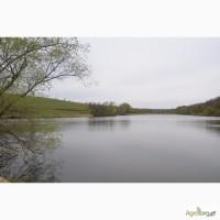 Продаю готовый бизнес -зарыбленные озера в Кировоградской области