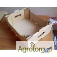 Картонный ящик под виноград на 5 кг
