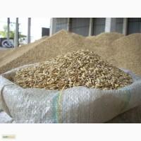 Ячмень для корма сх животным и птице, мешок 25кг