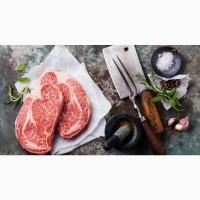Продажа Охлажденного и Замороженного Мяса (Свинина, Говядина)