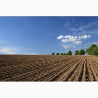 Продам 40г землі під ОСГ