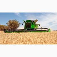 Пшеница 2.3 класс самовывоз дорого