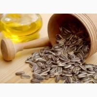 Куплю масличный подсолнух от 100т