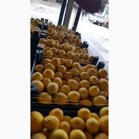Продажа оптом лимонов 3 качества из Турции