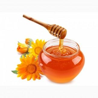 Покупаю мед с антибиотиком подсолнух