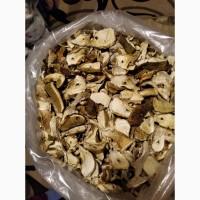 Продам сушені гриби із закарпаття