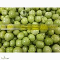 Продам помидор зеленый