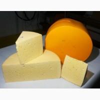 Купим сыр и сырный продукт