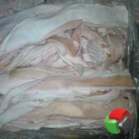 Продам шкуру свиную от 1-й тонны