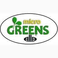 Мікрогрін (Микрозелень) Паростки Микрогрин Микрозелень
