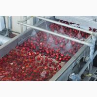 Охлаждение ягод