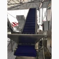 Ленточный конвейер для транспортировки ягод