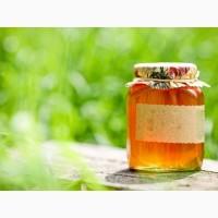 Покупаю мед в Кировоградской и соседних обл