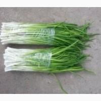 Реализуем лук зелёный
