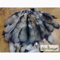 Продажа шкур лисы чернобурки, песца, шубы, жилетки, воротники