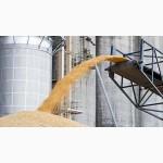 Зерновозы Даф, Скания полуприцепы, сцепки для грузоперевозок зерна кукурузы, пшеницы