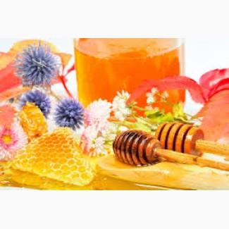 Закупаем дорого мед в Днепропетровской области