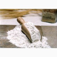 Борошно (мука) цільнозернове зі спельти (від 1 кг.)