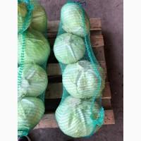 Продам капусту, капуста оптом Харьков