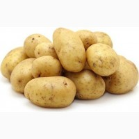 Куплю товарный картофель