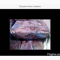 Продам печень говяжью
