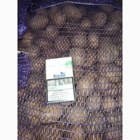 Продам картофель для бюджетных организаций от поставщика