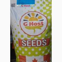 Продам семена компании GHost