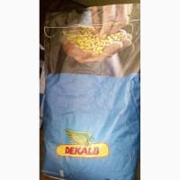 Кукуруза, подсолнечник. Посевной материал