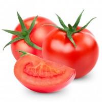 Продам помидор оптом отличного качества
